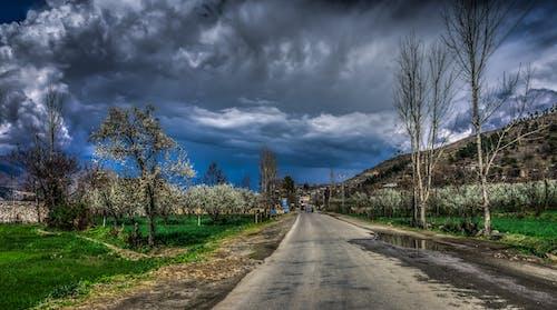 多雲的, 天空, 草, 路 的 免費圖庫相片