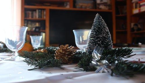 Безкоштовне стокове фото на тему «дерево, З Різдвом, зелений, кришталь»