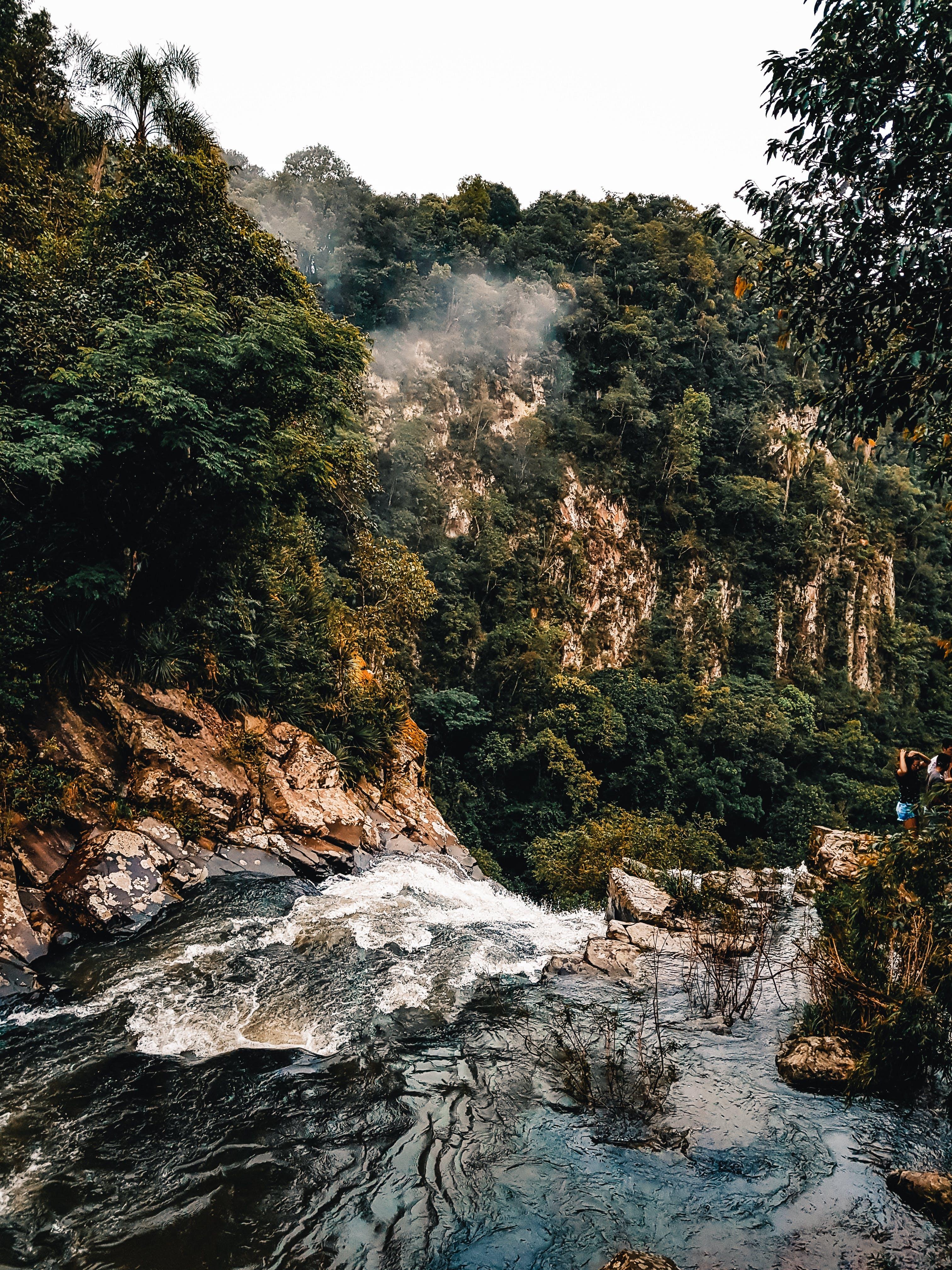 Free stock photo of aventura, cachoeira, floresta, fotografia da natureza