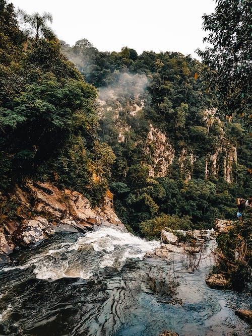 Ảnh lưu trữ miễn phí về aventura, bộ nhớ cache, bức ảnh da thiên nhiên, trilha