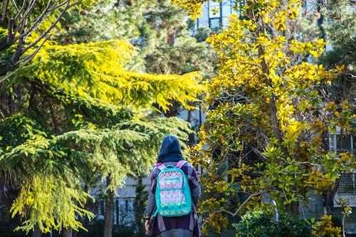 Photos gratuites de arbres, donnant sur, jeune fille, nature