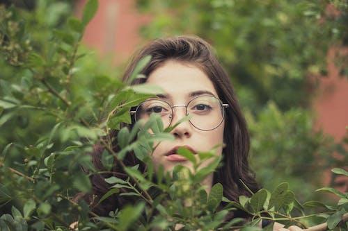 Gratis lagerfoto af brunette, grønne blade, grønne planter, kvinde
