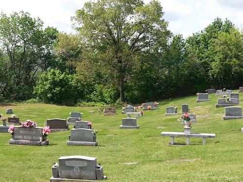 Kostnadsfri bild av gravsten, gravstenar, kyrkogård