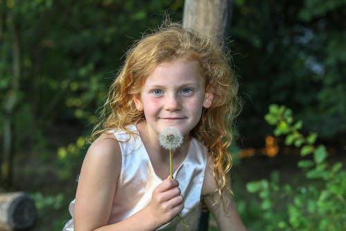 Foto d'estoc gratuïta de gingebre, nena