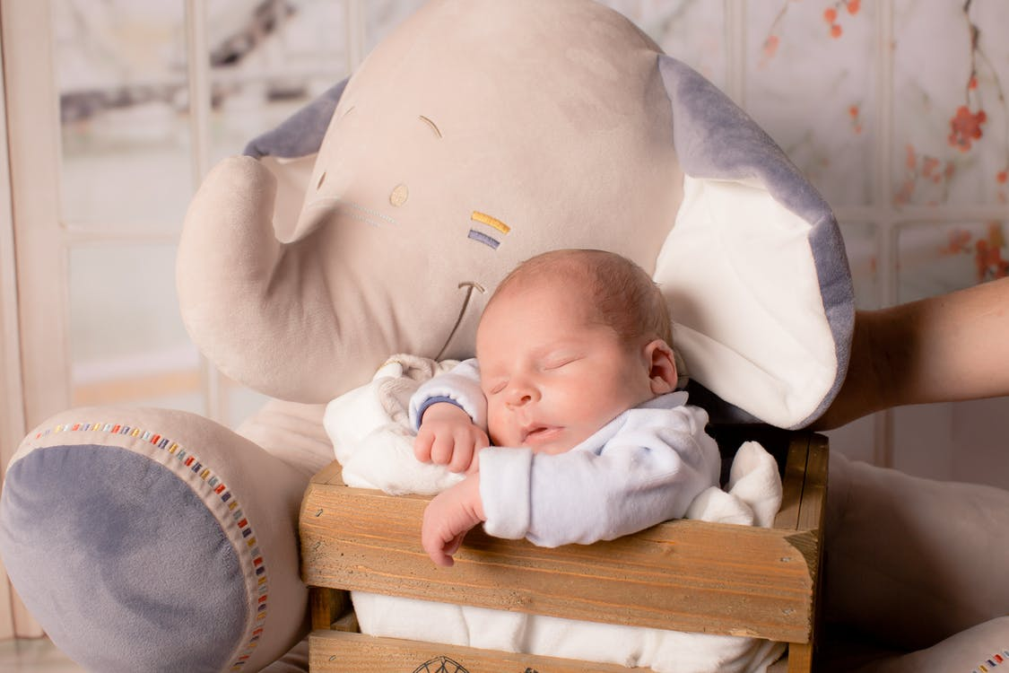 Baby In Wooden Box Together With Elephant Plush Toy