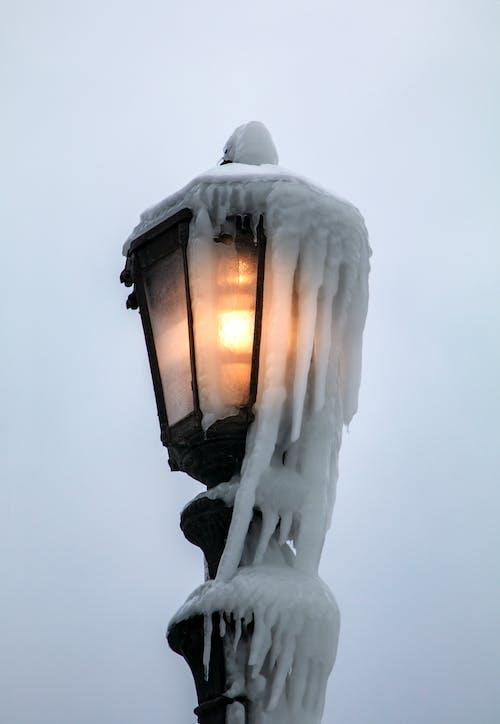 Безкоштовне стокове фото на тему «niagara, заморожений, зима, лід»