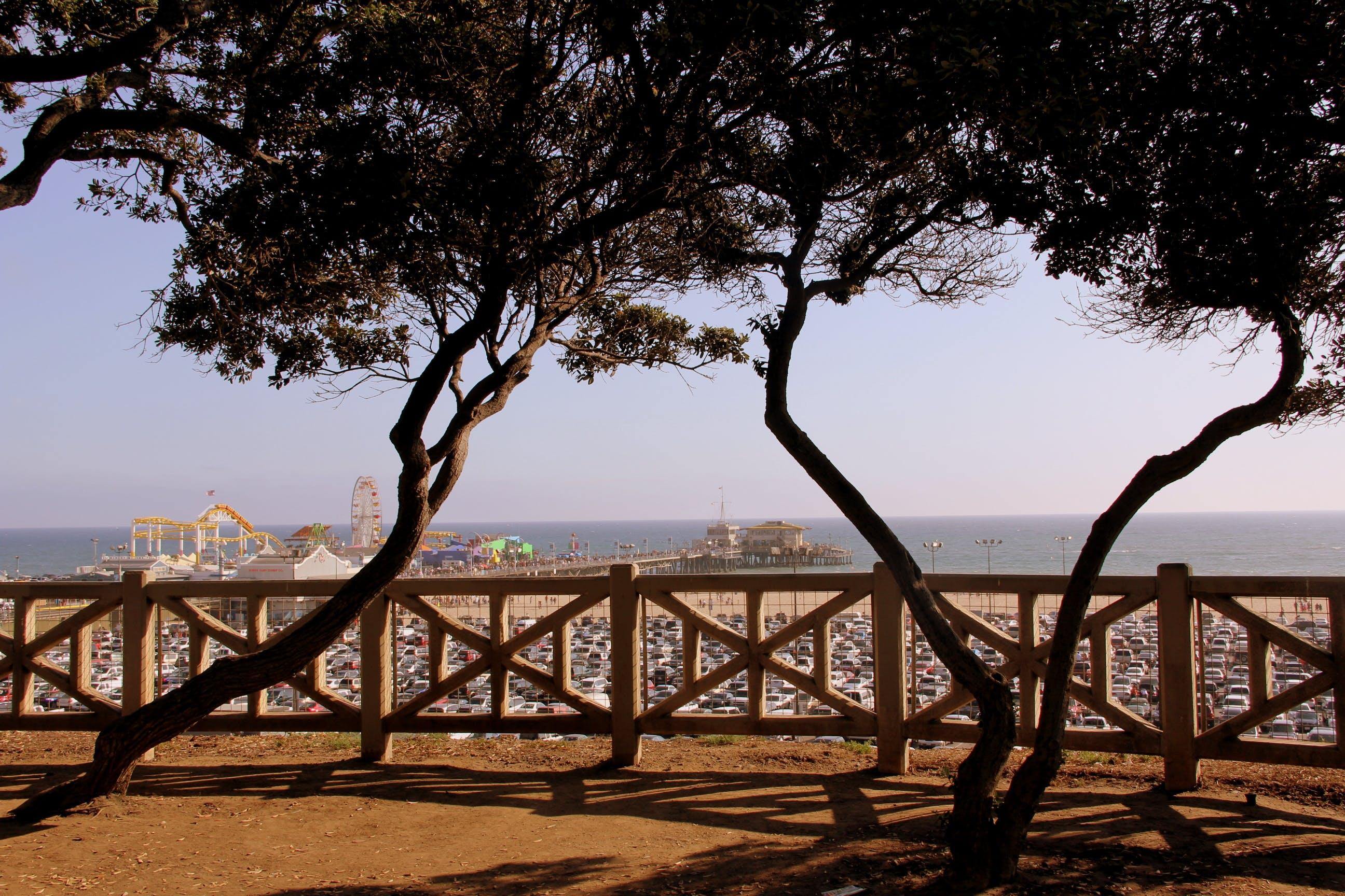 Kostenloses Stock Foto zu bäume, dock, draußen, ferien