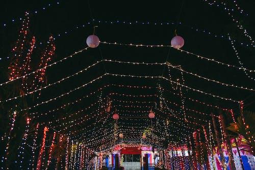 インドの伝統, ゲートウェイ, 夜景, 廊下の無料の写真素材
