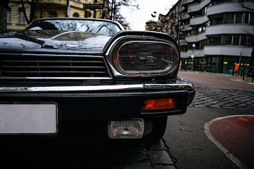 Gratis lagerfoto af bil, detalje, forside, jaguar