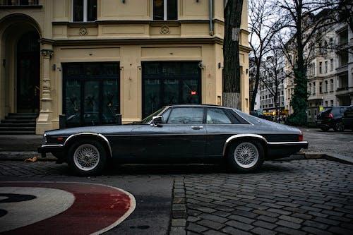 Gratis lagerfoto af bil, detalje, fra siden, jaguar