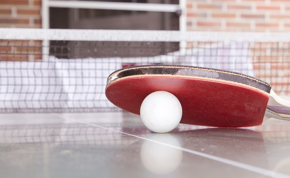 White Pingpong Ball Beneath Red Table Tennis Paddle