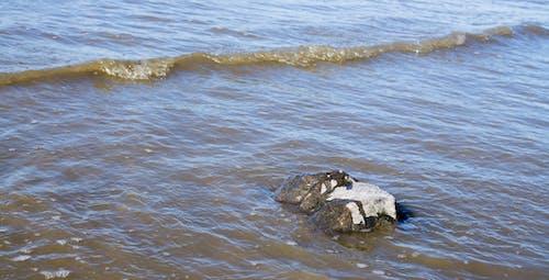Základová fotografie zdarma na téma léto, pláž, voda