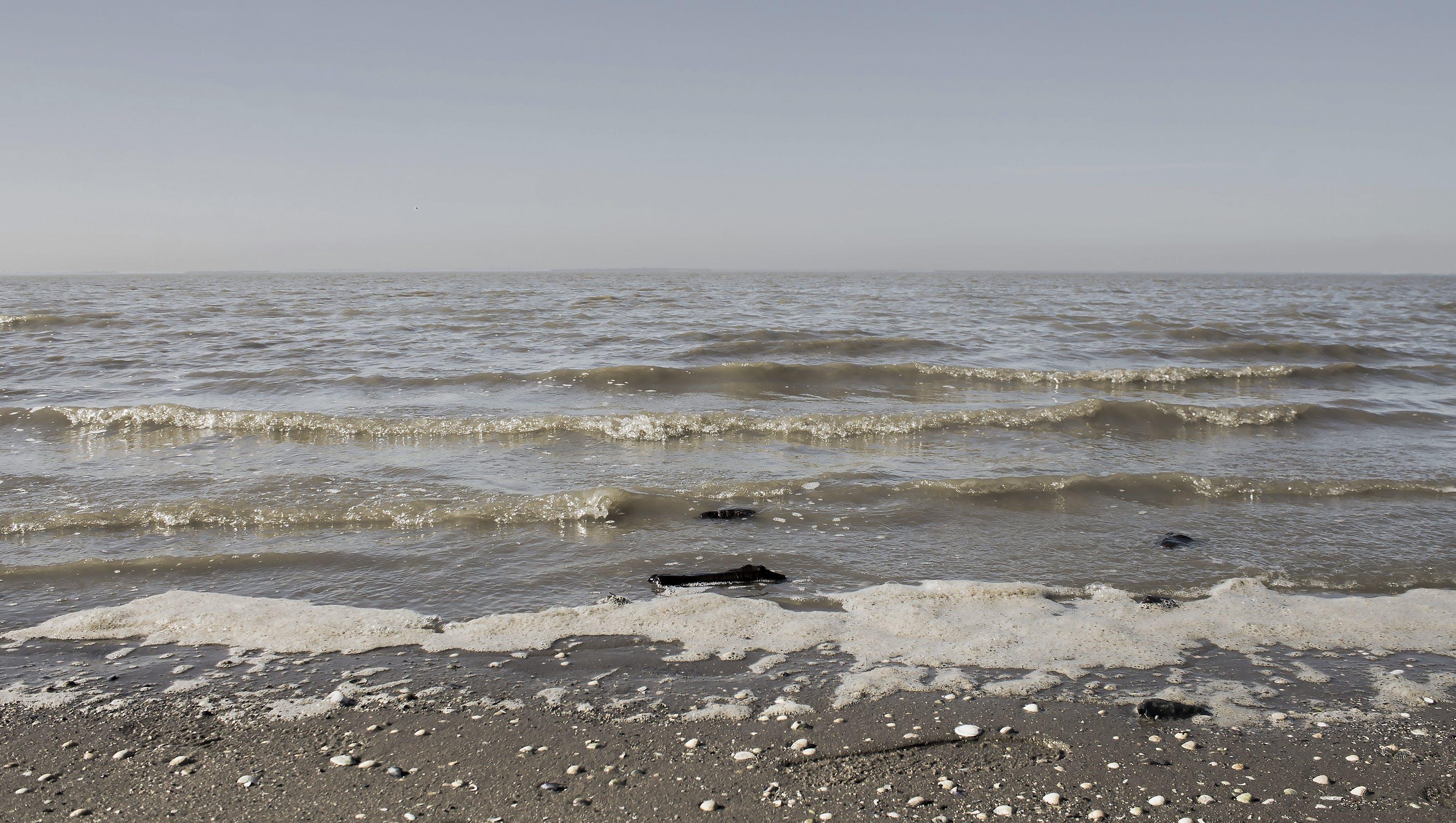 Free stock photo of beach, water