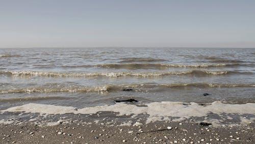Základová fotografie zdarma na téma pláž, voda