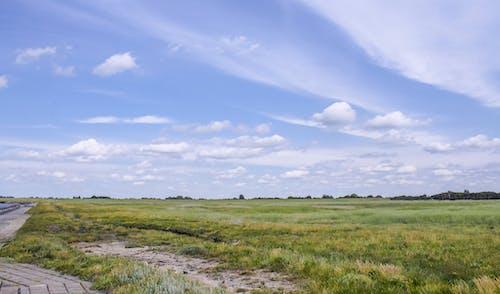 Základová fotografie zdarma na téma krajina, mraky, obloha, zelená