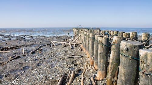 Základová fotografie zdarma na téma krajina, pláž, voda