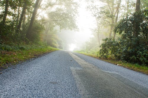 Free stock photo of fog, street