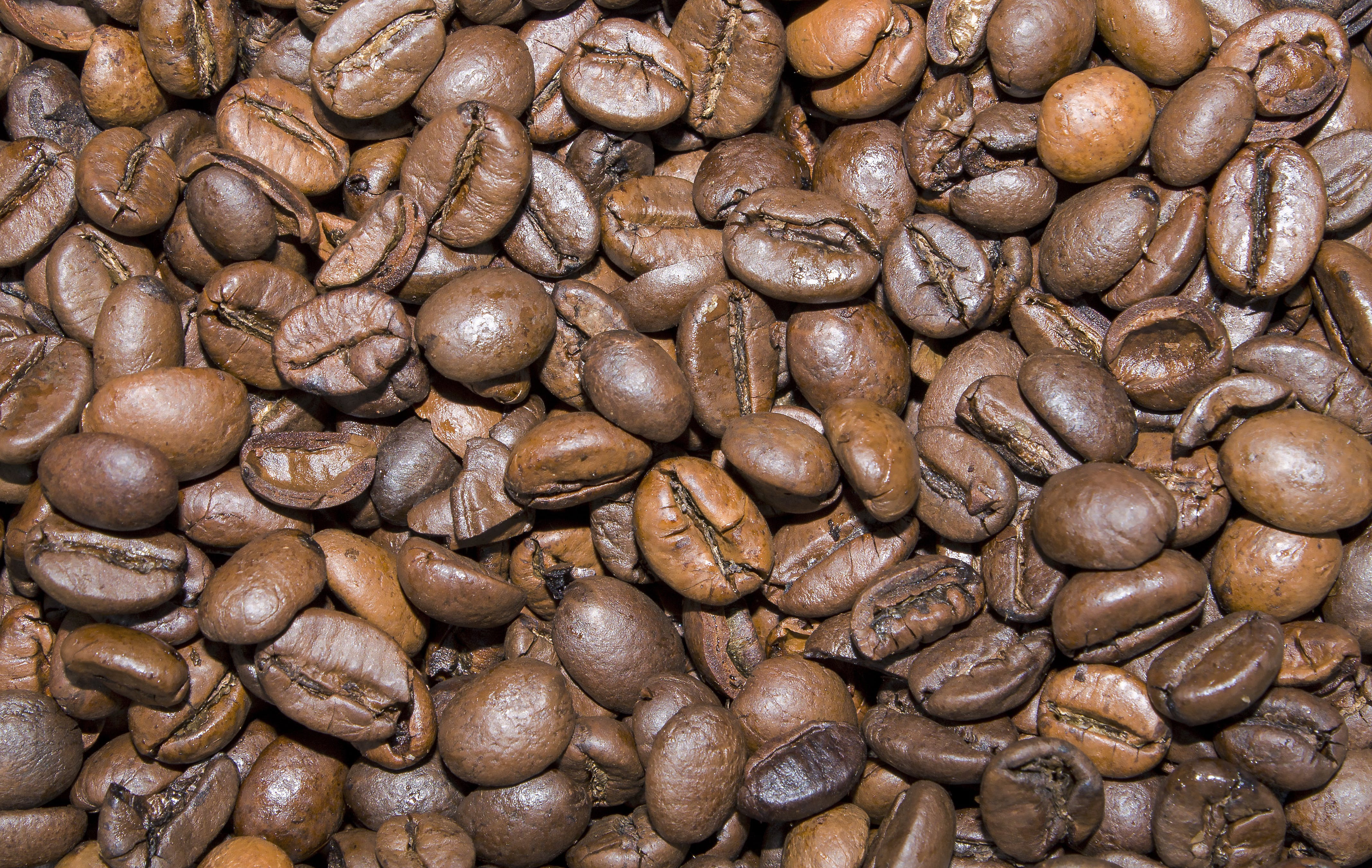 Free stock photo of background, coffee, coffee beans, detail