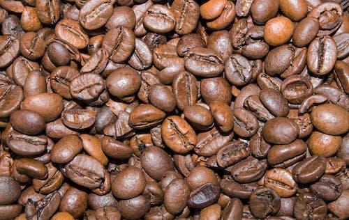 Základová fotografie zdarma na téma detail, káva, kávová zrna, pozadí