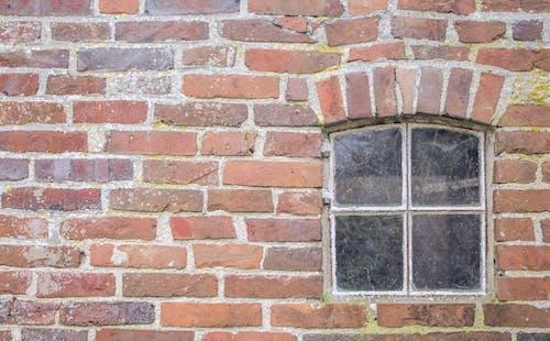 Foto d'estoc gratuïta de maons, mur de maons