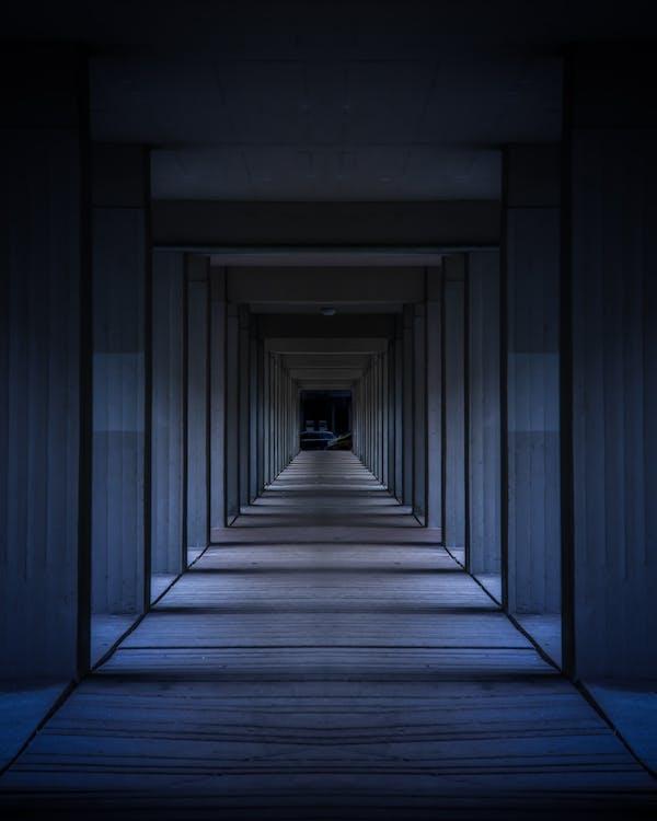 architektúra, denné svetlo, hala