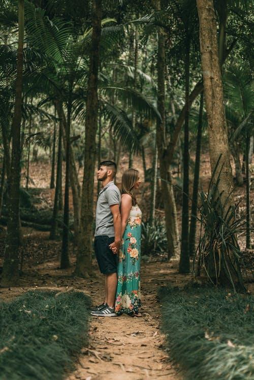 Darmowe zdjęcie z galerii z czas wolny, dorośli, drzewa, kobieta