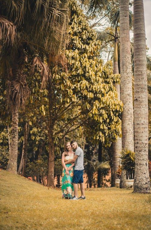 Foto profissional grátis de agasalho, árvores, atraente, beleza