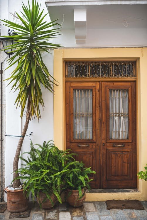 Green Leafed Potted Plants in Front of Doorway