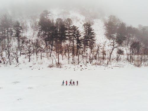 Бесплатное стоковое фото с друзья, зима, поход, снег