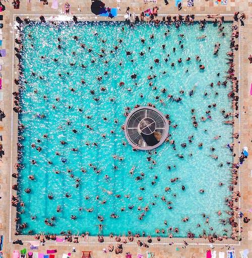 공중 촬영, 붐비는, 사람, 수영장의 무료 스톡 사진
