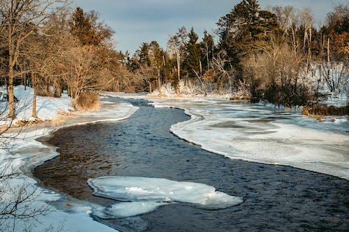Kostenloses Stock Foto zu fließen, gefroren, kalt, strom