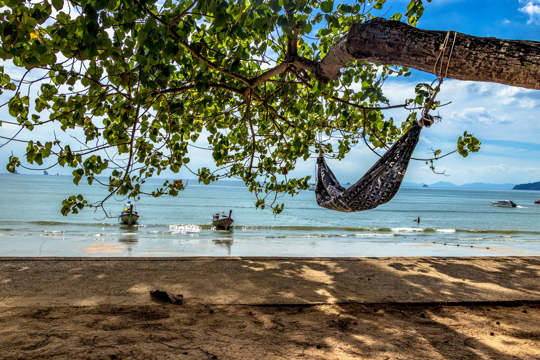 Gratis lagerfoto af afslapning, båd, hav, Krabi