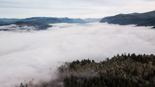 Free stock photo of cloud, cloudy skies, columbia gorge, fog