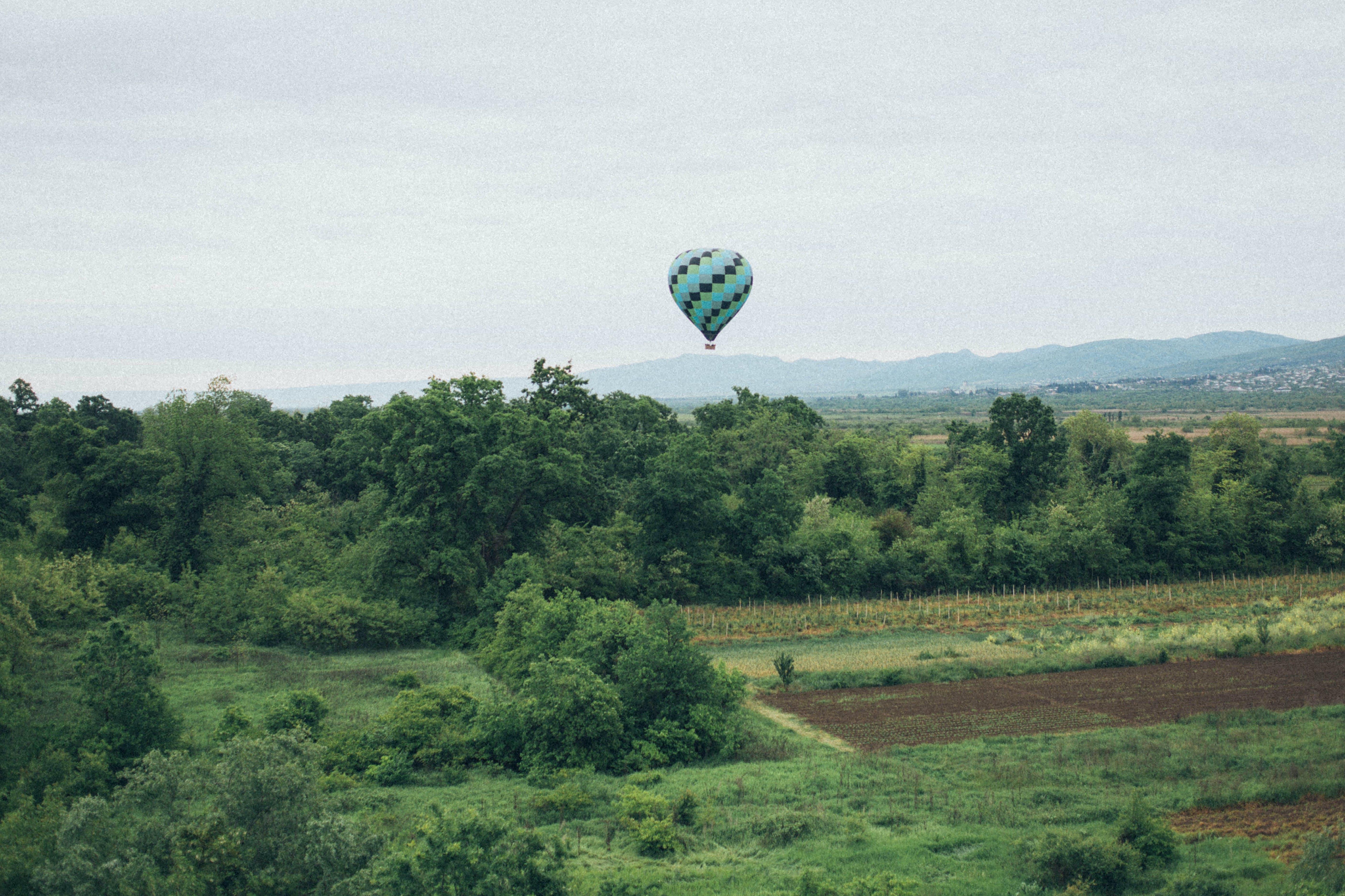 Hot-air Balloon over Green Trees