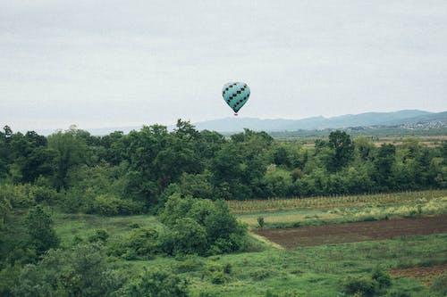 Foto stok gratis alam, balon udara, bidang, indah