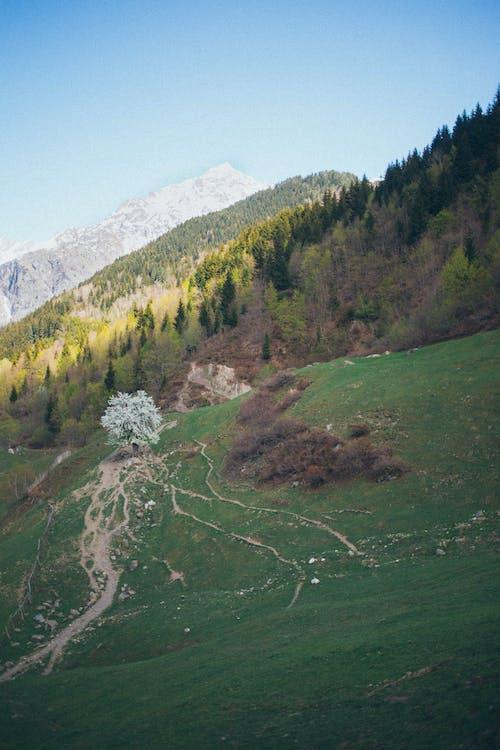 Fotos de stock gratuitas de cielo, colina, cordillera, cuesta