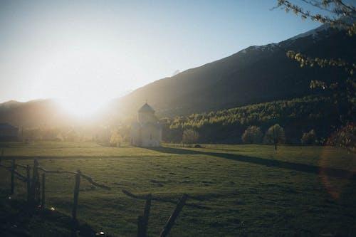 Foto stok gratis alam, berkabut, bidang, Fajar