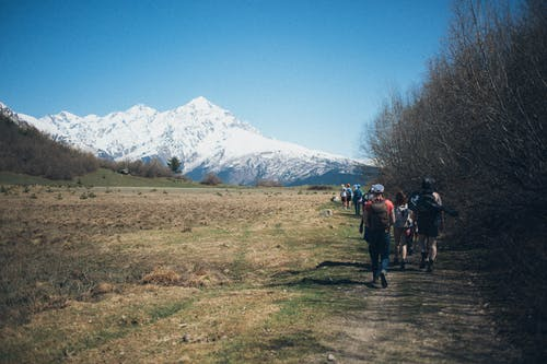 Foto d'estoc gratuïta de arbres, caminants, cim, esbarjo
