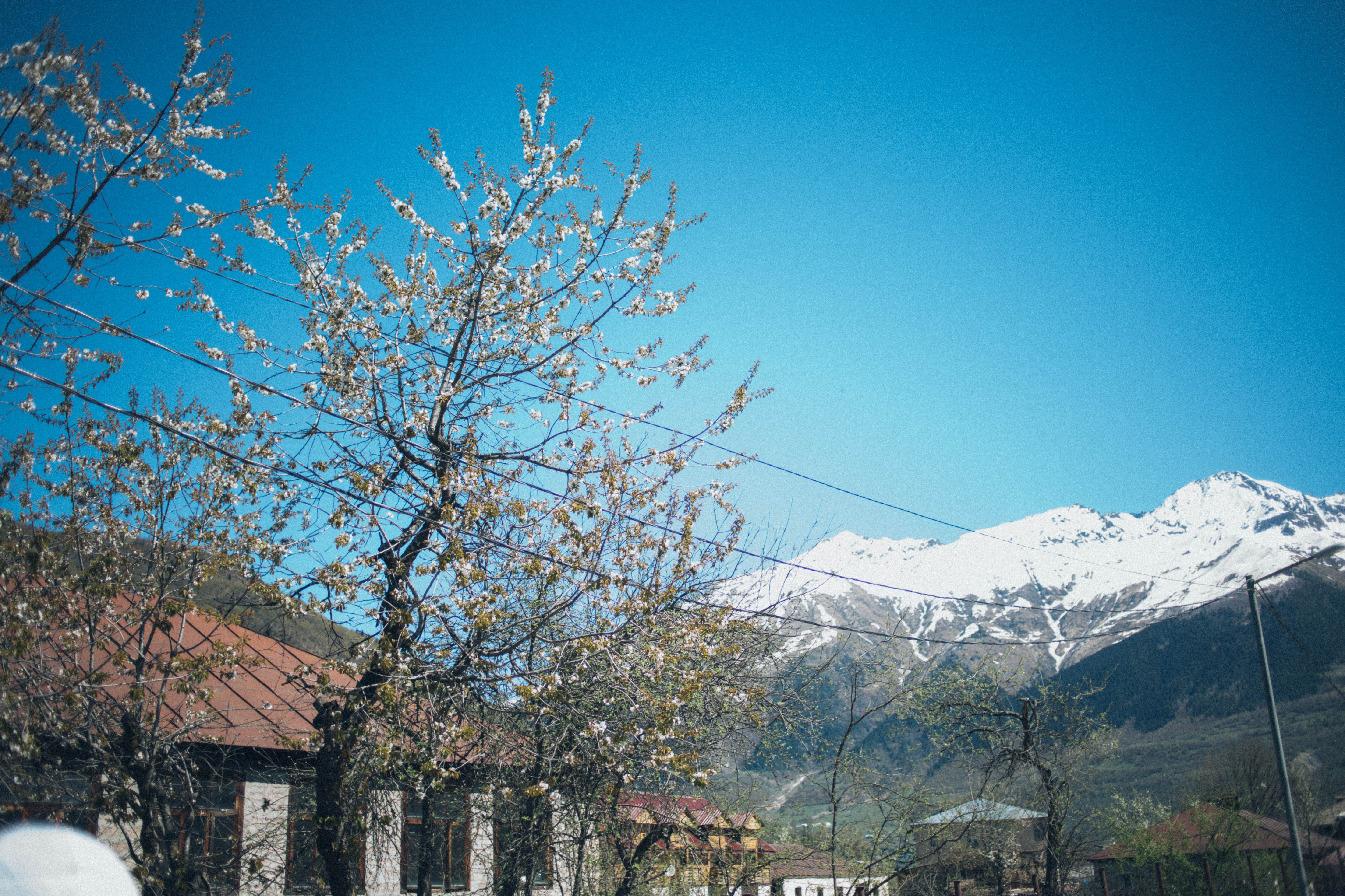 View of Snow Capped Mountain Near Village