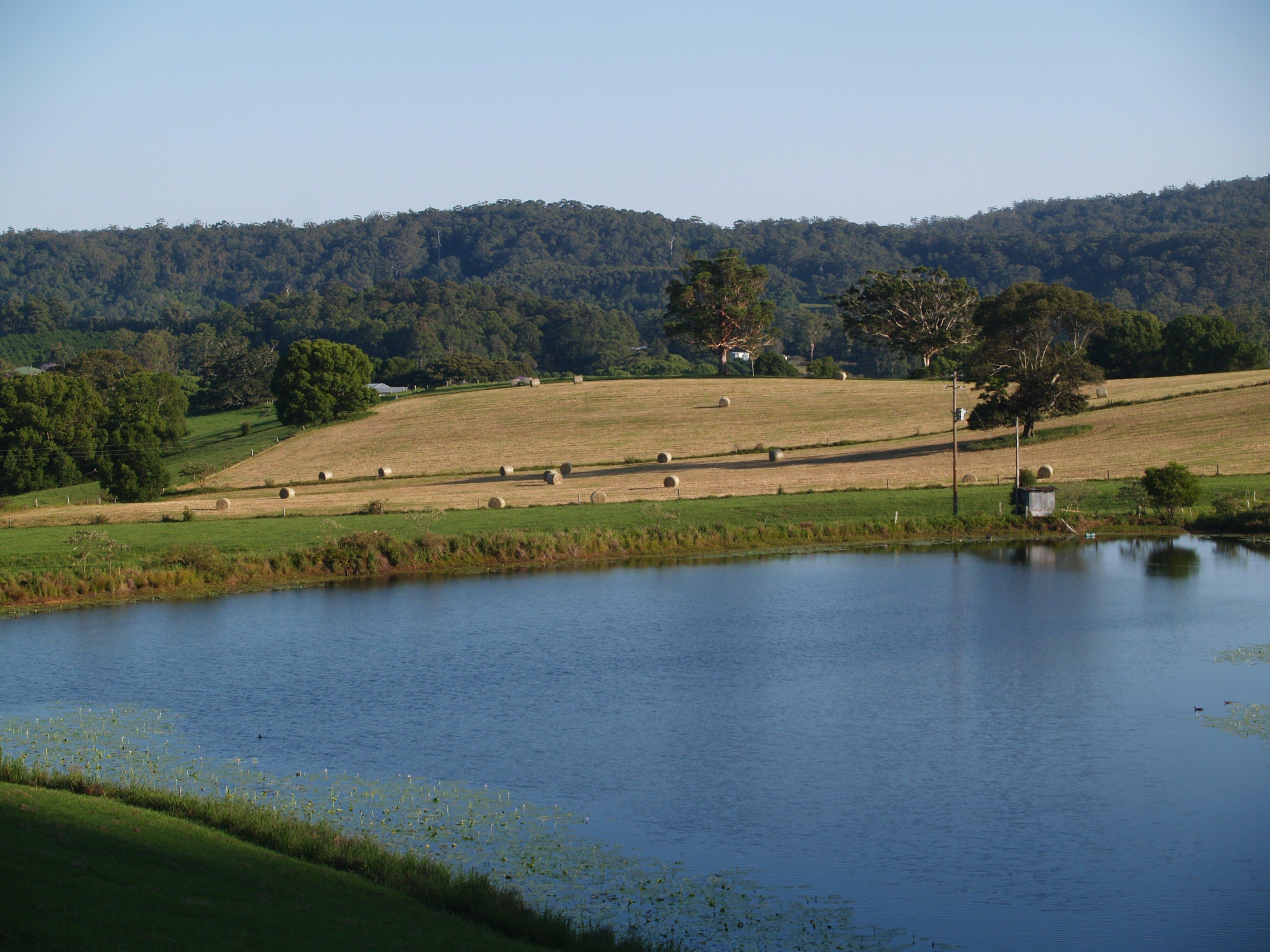 Free stock photo of dam, farm, farming, farmland