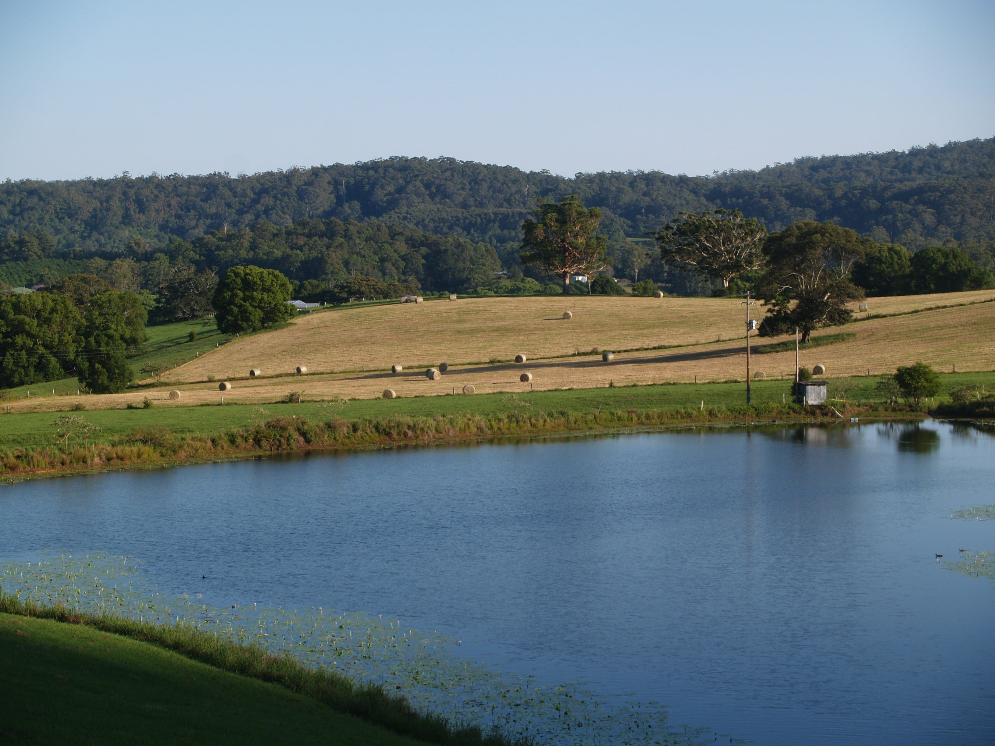 Free stock photo of water, farm, lake, farming