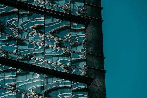 Foto profissional grátis de arquitetura, construção, copo, janelas