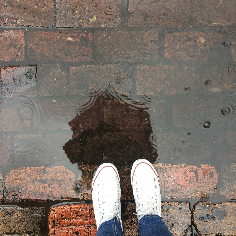brick, puddle, rain