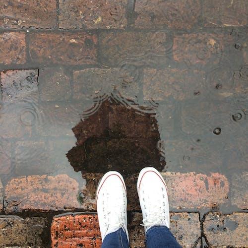 Darmowe zdjęcie z galerii z cegła, deszcz, kałuża, odbicie