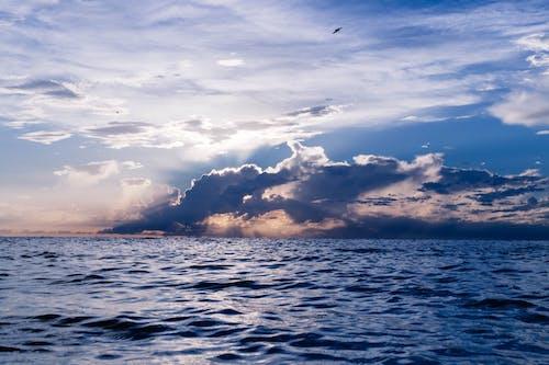 Foto d'estoc gratuïta de aigua, bonic, cel, clareja