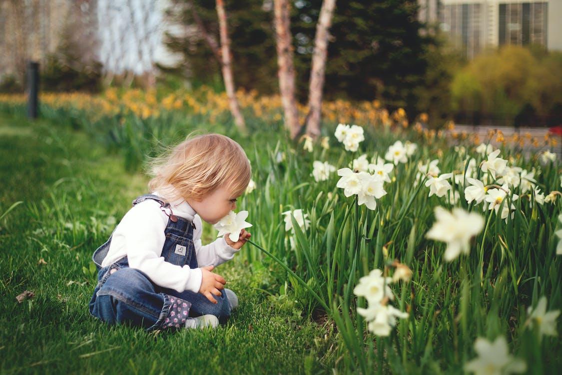 Girl Sitting on Grass Smelling White Petaled Flower