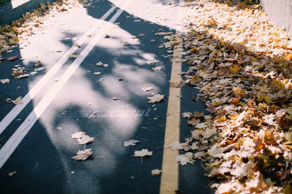asfalt, buit, carrer