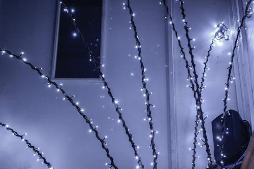 Foto stok gratis biru, dalam ruangan, dongeng, lampu