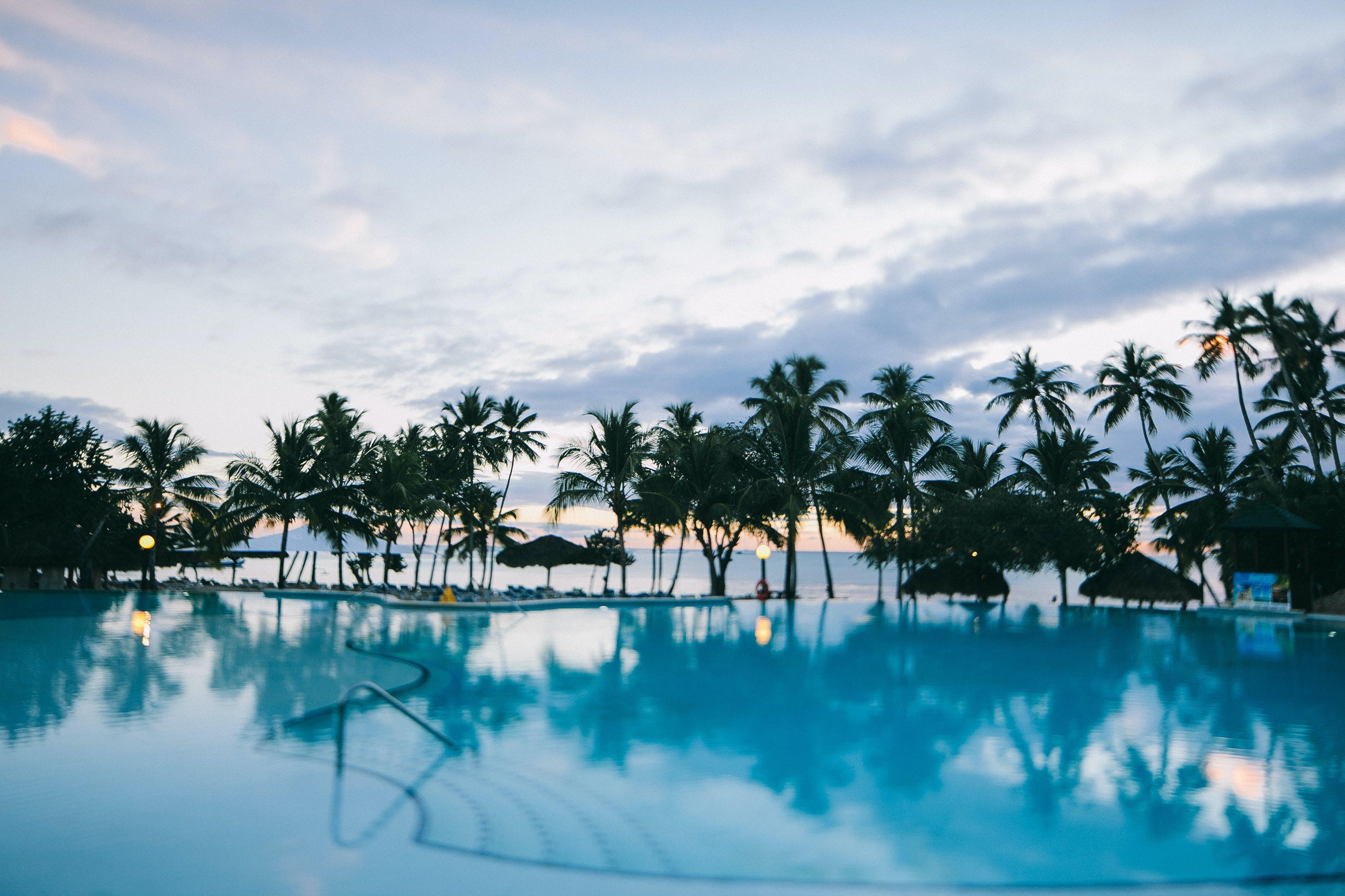 Darmowe zdjęcie z galerii z basen, drzewa, drzewa kokosowe, kurort