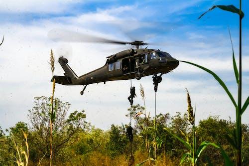 uh-60l, 軍隊, 黑鷹 的 免費圖庫相片
